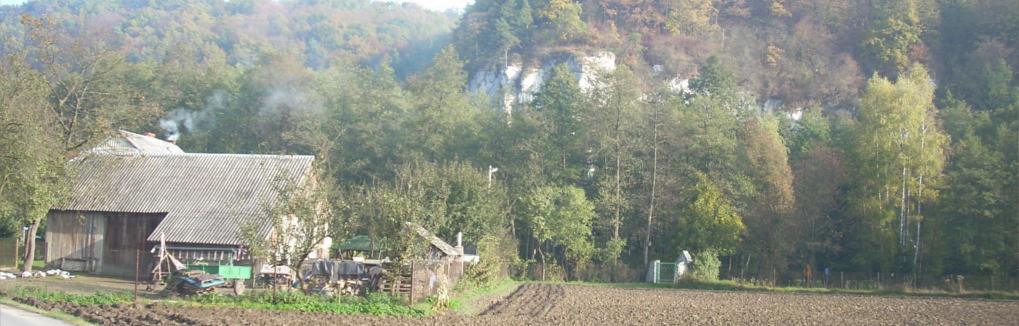 Renowacja zdjęć Pilzno