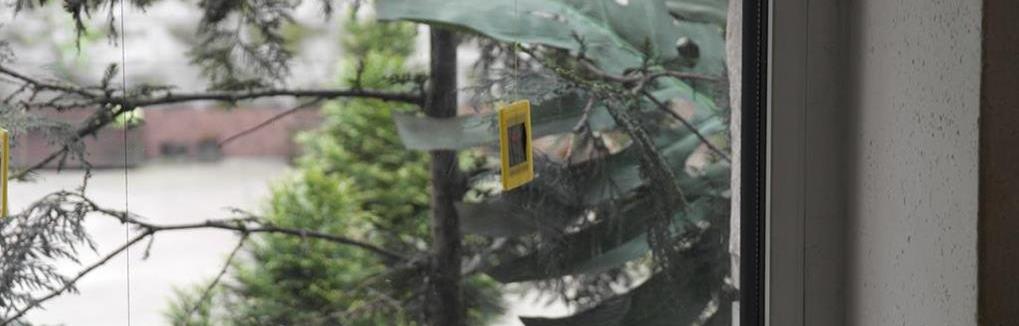 Usuwanie rys zdjęcia Jelenia Góra