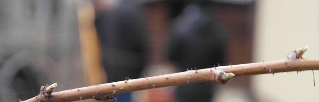 Wywoływanie zdjęć cyfrowych Jelenia Góra