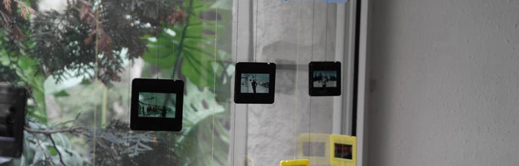 Zdjęcia z kliszy na płytę Jelenia Góra