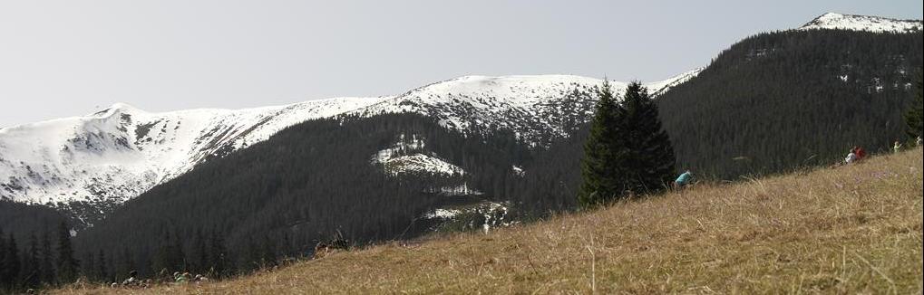 Zniszczone fotografie Jelenia Góra