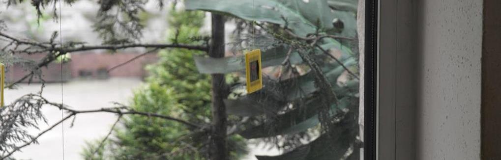 zniszczone zdjęcia Pogorzela